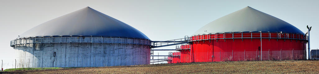 SYLVIS provides recommendations to support policy development for anaerobic digestate.